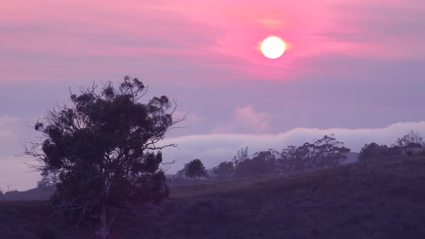 Beautiful reddish sunset through fog and clouds. Royalty-free stock video