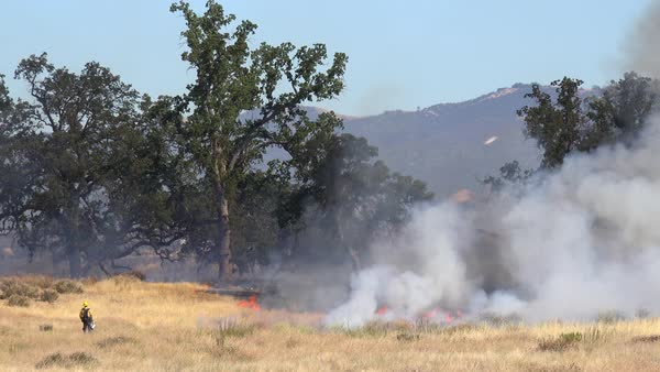 A wildfire burns in the hills of Central California as firefighters look on. Royalty-free stock video