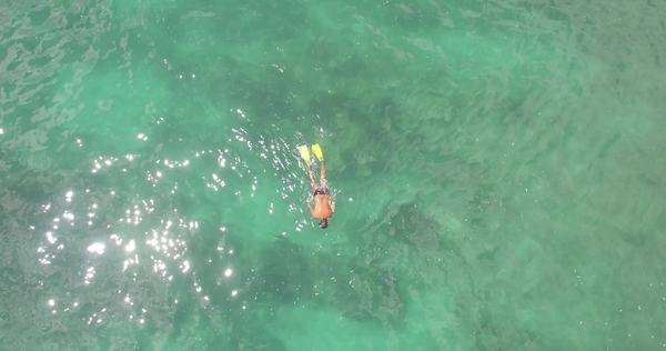 Birds eye aerial/Drone shot revealing a swimmer in clear water off the  coast of Thailand Royalty-free stock video