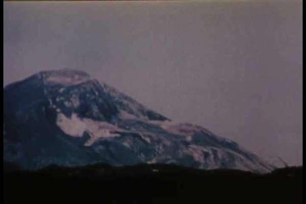 Life returns to Mt. Saint Helens after the 1980 eruption ...