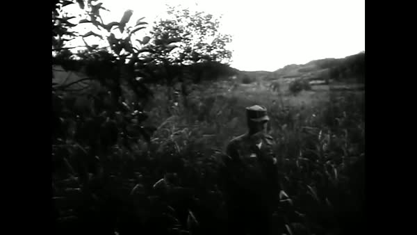 The DMZ between North and South Korea in 1965. Royalty-free stock video