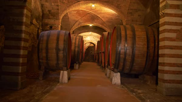 Old wine cellar with giant barrels, camera push in Royalty-free stock video