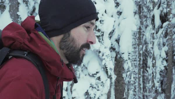 Tracking shot of a ski mountaineer walking in a snow covered forest Royalty-free stock video