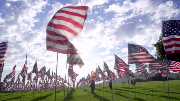 United States flags wave in the wind Royalty-free stock video