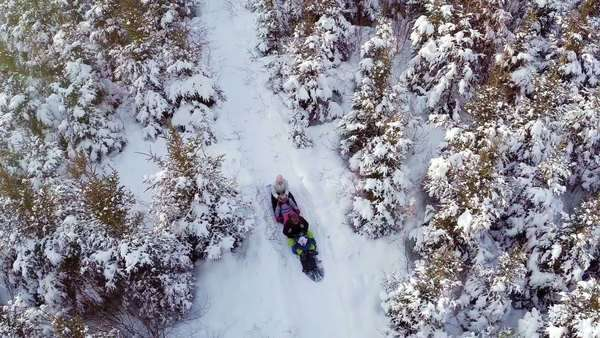 Aerial video of family enjoying winter and sliding in nature Royalty-free stock video