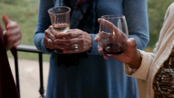 Active senior women holding wine glasses smiling laughing and having a good time outside in slow motion Royalty-free stock video