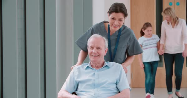 Nurse pushing senior patient in wheelchair along corridor Royalty-free stock video