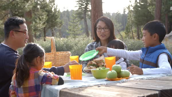 Family sharing picnic food at an outdoor table Royalty-free stock video