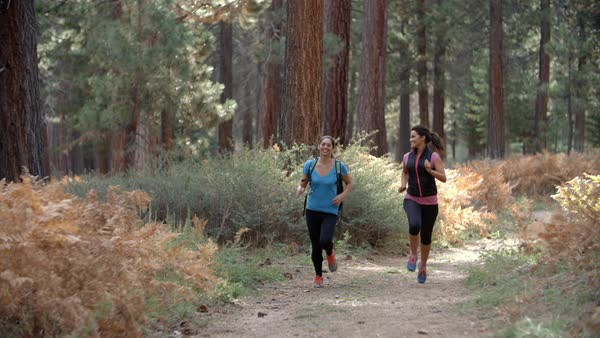 Two young women running in a forest Royalty-free stock video