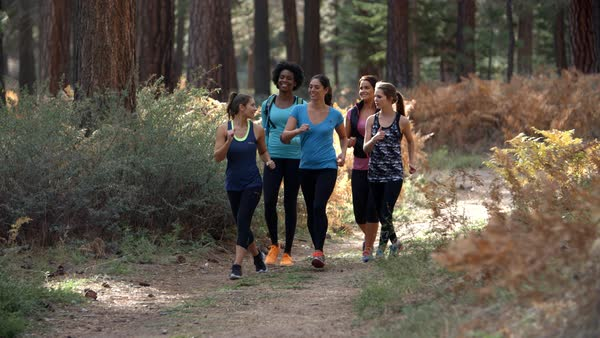 Group of five women runners talking as they walk in a forest Royalty-free stock video