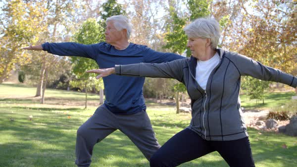 Senior couple doing yoga exercises together in park Royalty-free stock video