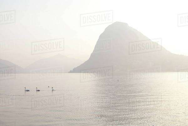 Landscape with mountain and swans on a lake Royalty-free stock photo