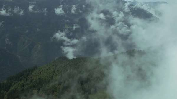 Aerial shot of a mist above forest Royalty-free stock video