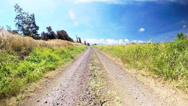 POV driving down a dirt road on the Big Island of Hawaii. Royalty-free stock video