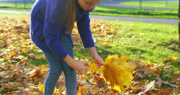 Close-up medium close-up with leaves in first plan in focus girl moving them Royalty-free stock video
