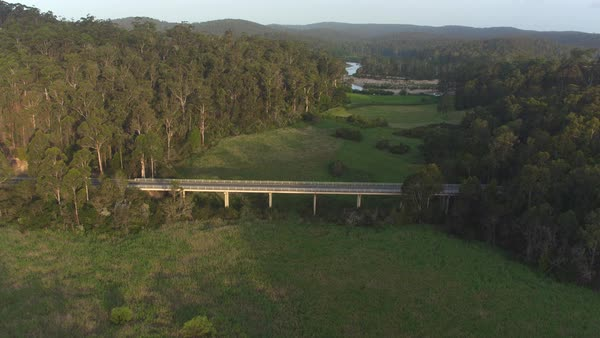 AERIAL, MOVING FORWARD: Flying above highway bridge leading over vast green swamp land. Beautiful meadow clearing and river running through stunning eucalyptus forest in mystical Australian swamp.  Royalty-free stock video