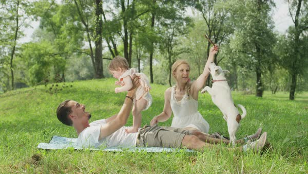 SLOW MOTION, CLOSE UP, DOF: Smiling young dad lying on blanket, playing having fun with cheerful sweet baby daughter. Beautiful mum sits beside and plays with cute little pet dog chasing a stick Royalty-free stock video