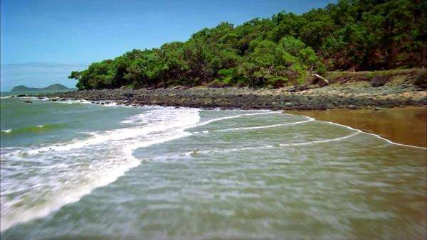 Aerial view of a coastline with sandy beach and abundant vegetation Rights-managed stock video