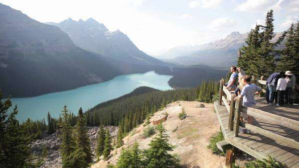 Tourists at Peyto Lake Overlook, Banff National Park, Canada Royalty-free stock video