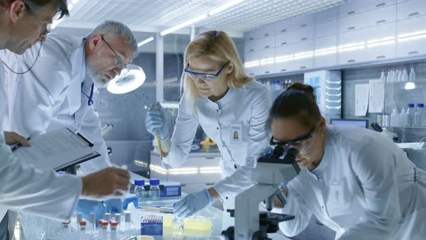 Team of medical research scientists work on a new generation disease cure Royalty-free stock video