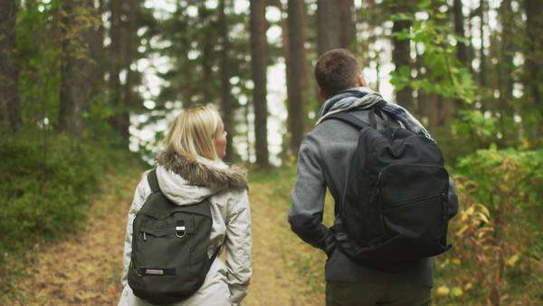 Follow shot from the back of a couple walking in an autumn forest with backpacks. Royalty-free stock video