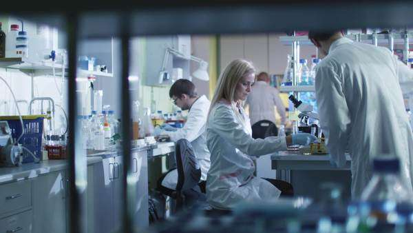 Team of caucasian scientists in white coats are working in a modern laboratory. Royalty-free stock video