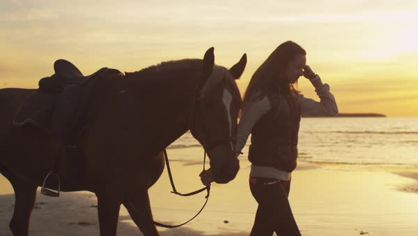 Young girl and her horse walking on beach in sunset light Royalty-free stock video