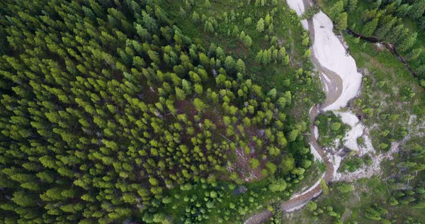 Aerial shot of a river in a forest Royalty-free stock video