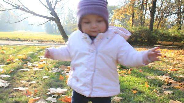 Happy baby learns to walk in an autumn park Royalty-free stock video