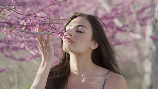 Close up slow motion panning shot of woman smelling flowers on tree Royalty-free stock video