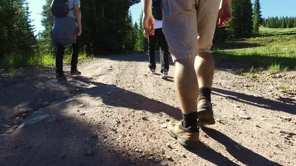 Medium shot of three hikers walking on a path Royalty-free stock video