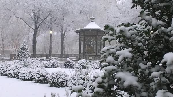 Slow motion shot of Rittenhouse Square in Philadelphia in winter Rights-managed stock video