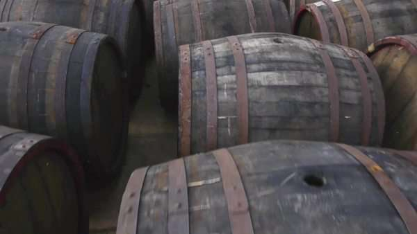 Flying over the rows of wooden wine barrels Royalty-free stock video