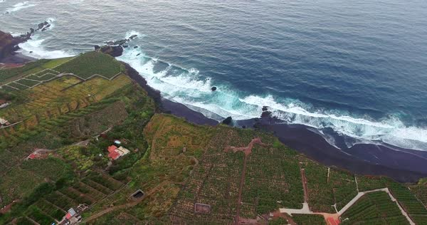 Aerial of tilt shot of ocean and green coast Royalty-free stock video