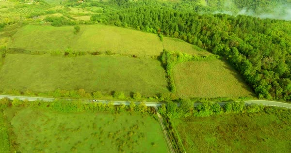 Panoramic view from above on the forest road, fields and forest, the car is moving along the road. Aerial shot. Royalty-free stock video