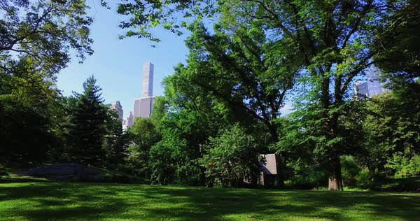 NEW YORK - Circa July, 2016 - A dolly establishing shot of the Manhattan skyline as seen from Central Park.  	 Royalty-free stock video