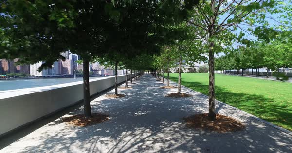A walking dolly shot of peaceful the treelined paths at Franklin D. Roosevelt Four Freedoms Park on the south end of Roosevelt Island.  	 Royalty-free stock video