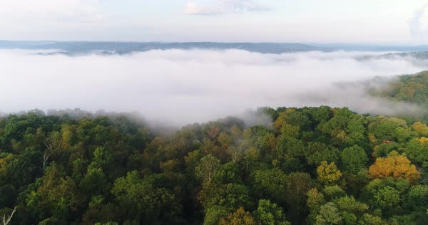 An early morning foggy aerial establishing shot of a Western Pennsylvania forest.   Royalty-free stock video