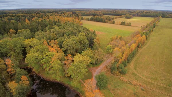 Aerial view of the forest and field in Lahemaa where the Sagadi manor is located in Estonia Royalty-free stock video