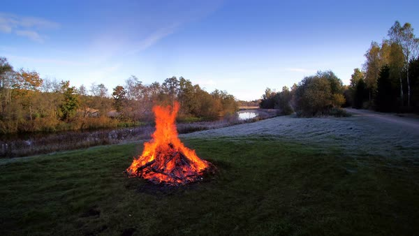 A bonfire on a grassy yard in Lahemaa park, Estonia Royalty-free stock video