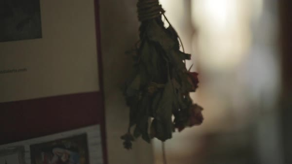 Hand-held shot of a bouquet hanging upside down in a restaurant Royalty-free stock video