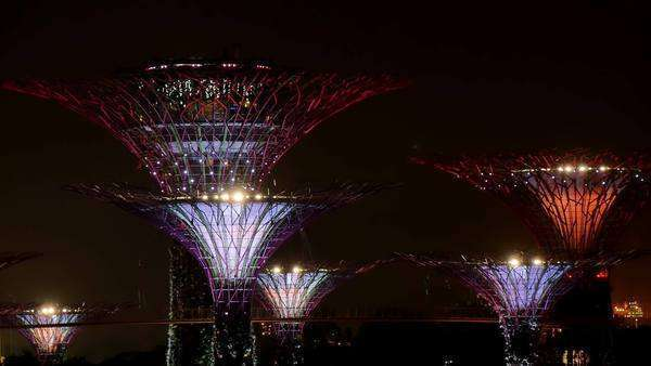 Singapore,famous gardens by the bay park illuminated at night performance light show trees pulsing  Royalty-free stock video
