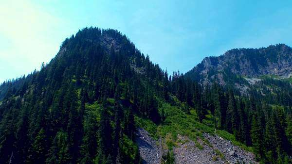 Upwards moving shot of a rocky, green alpine mountain in summertime Royalty-free stock video
