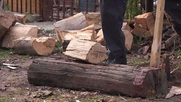 Image result for Hardwood Firewood Logs