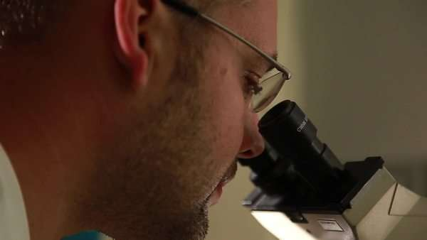 Laboratory researcher looks into microscope - dolly movement, close-up Royalty-free stock video