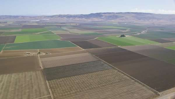 Aerial shot of fields with various types of agriculture. California farming in beautiful West coast countryside. Napa Valley wine country. Royalty-free stock video