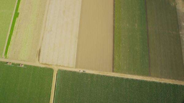 Aerial shot of fields with various types of agriculture. California farming. Royalty-free stock video
