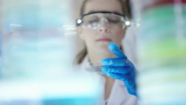 Chemical research scientist working in the lab with colorful liquids. Royalty-free stock video