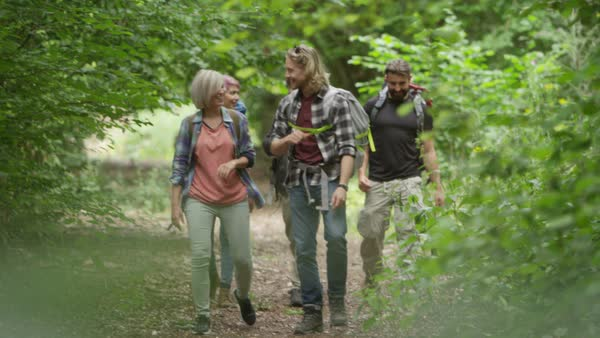 Group of friends hiking in the woods walking along a forest trail Royalty-free stock video