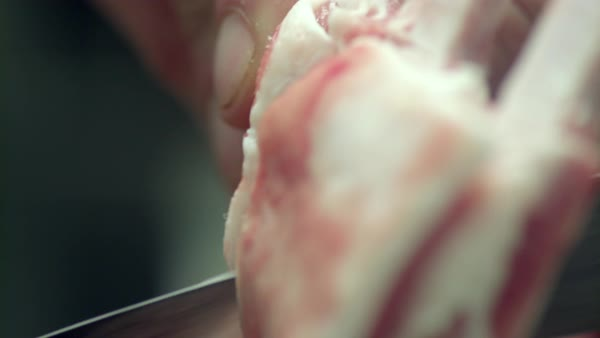 Hand-held shot of a chef cutting raw lamb rack Royalty-free stock video
